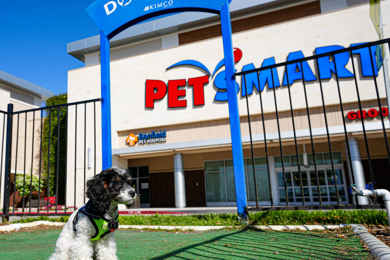 Spring TX: Grand Parkway Marketplace - Retail Space - Kimco ... on galena park map, sugar land map, webster map, tomball map, karen map, sydney map, humble map, elizabeth map, thomas map, the woodlands map, katy map, joshua map, missouri city map, jersey village map,